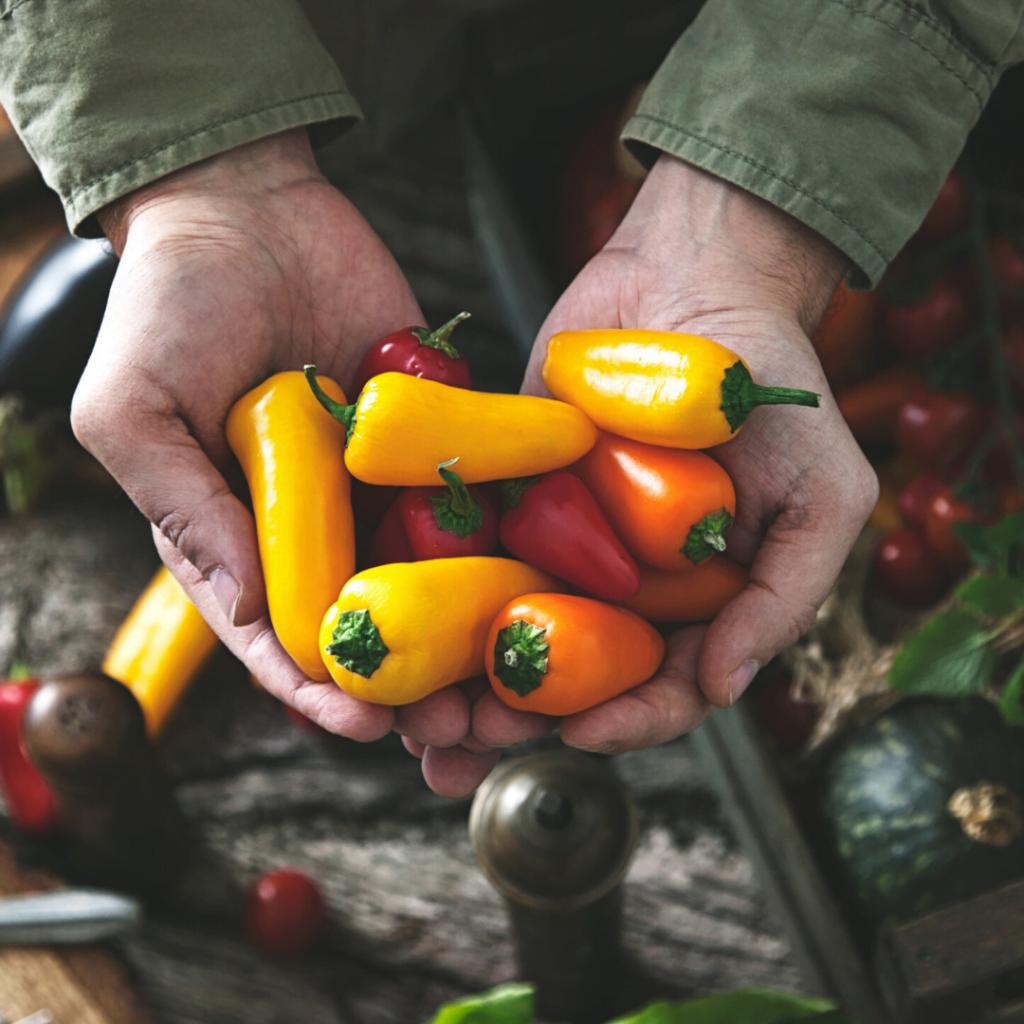 10 Best Veggies for Beginning Gardeners | Yankee Homestead