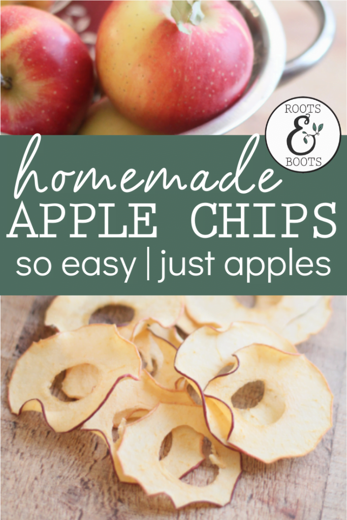 Easy Homemade Apple Chips   Roots & Boots
