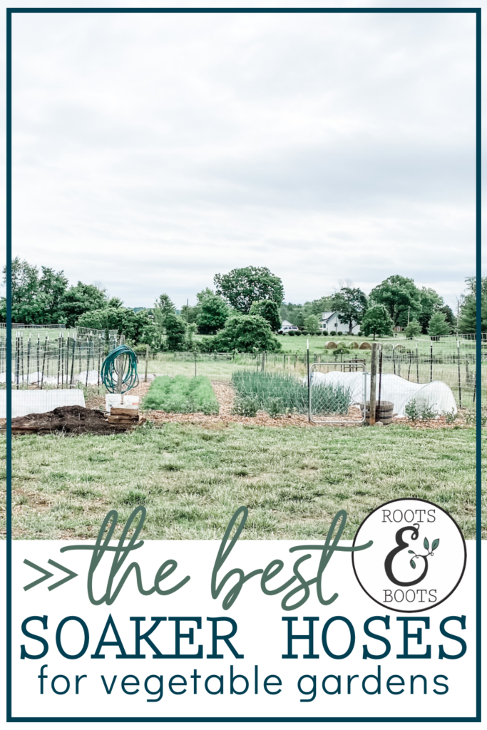 The Best Way to Keep Your Vegetable Garden Watered | Roots & Boots