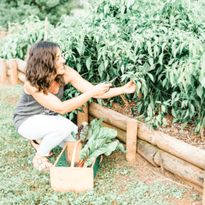 How to Grow an Entire Year's Supply of Peppers | Roots & Boots