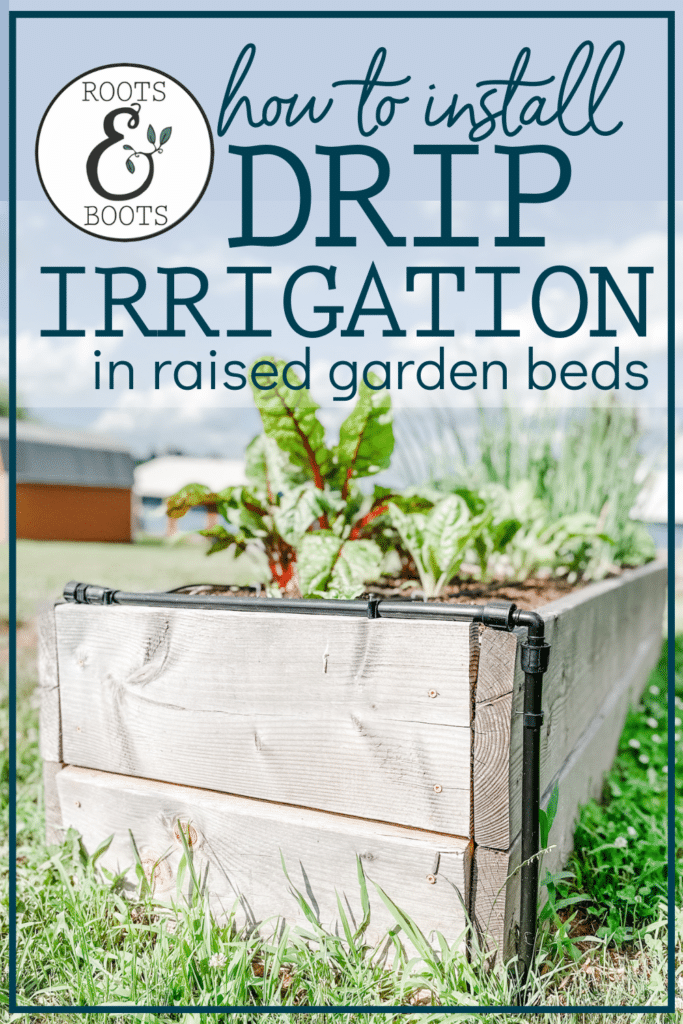 How to Install Drip Irrigation in Raised Garden Beds | Roots & Boots