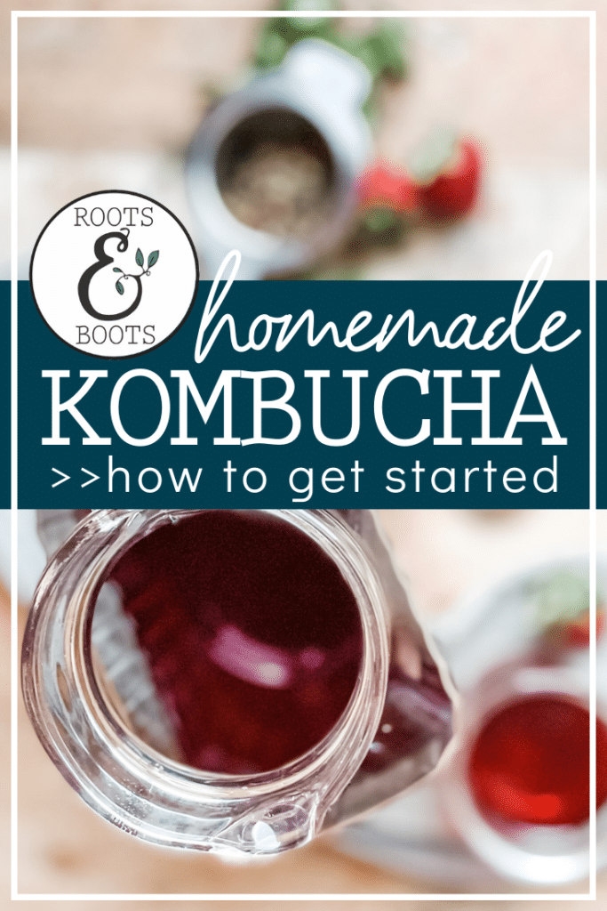 Getting Started with Kombucha | Roots & Boots