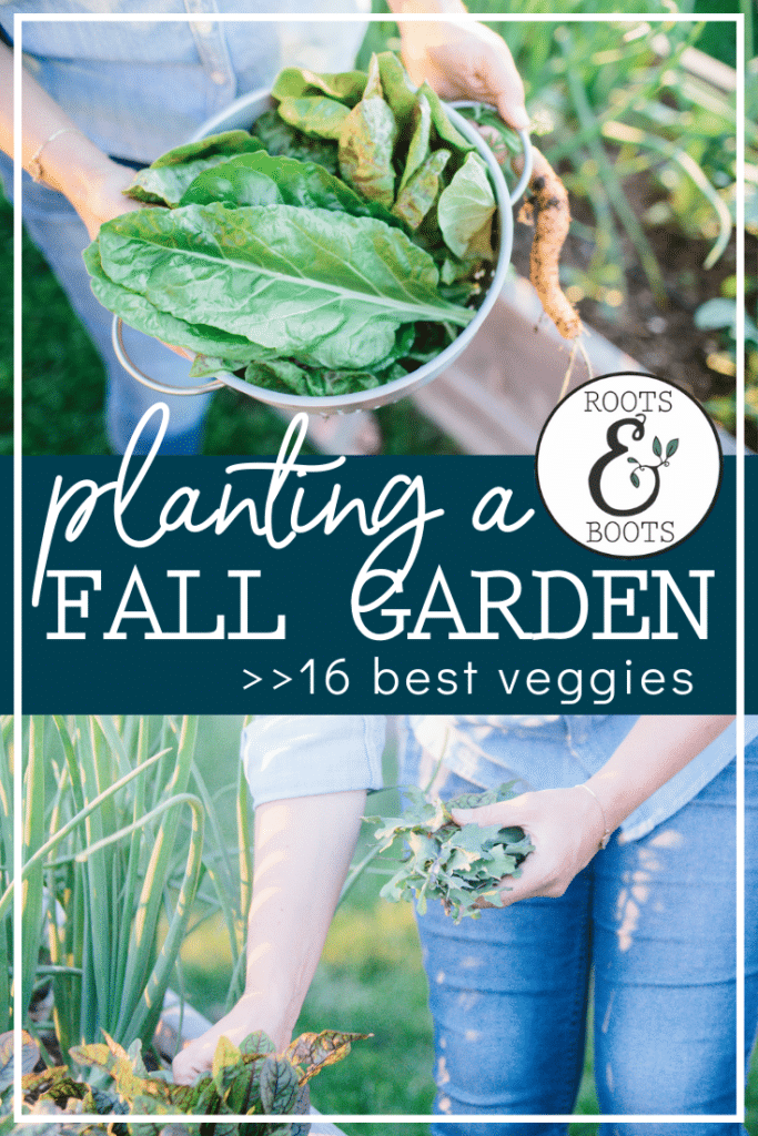 16 Best Veggies for Your Fall Garden   Roots & Boots