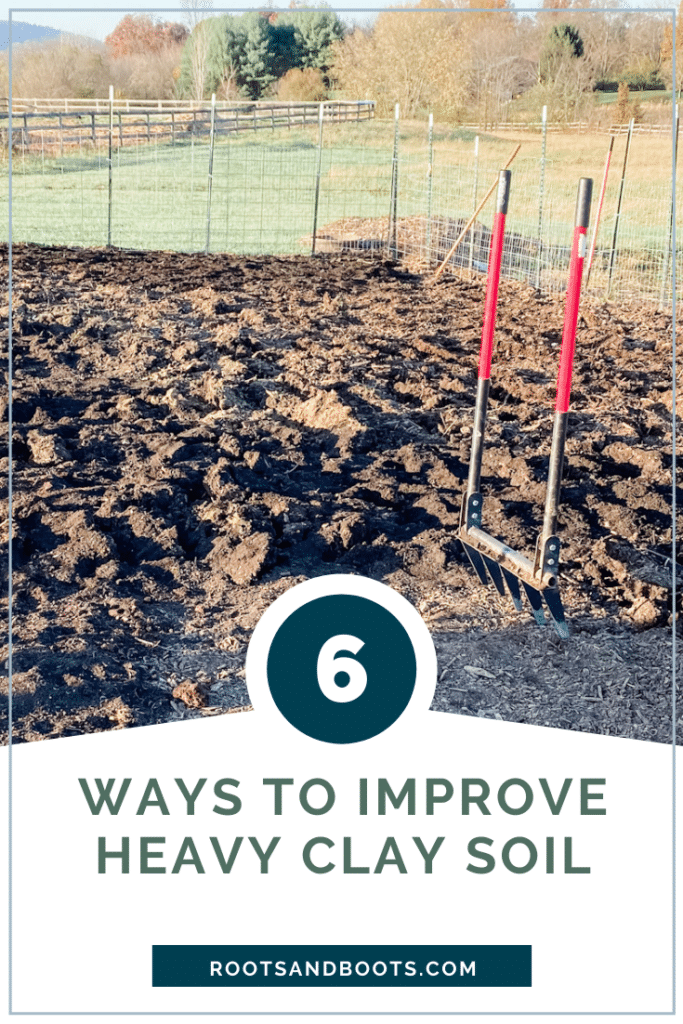 6 Tips for Gardening in Heavy Clay Soil   Roots & Boots