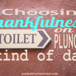 Choosing Thankfulness on a Toilet Plunger Kind of Day