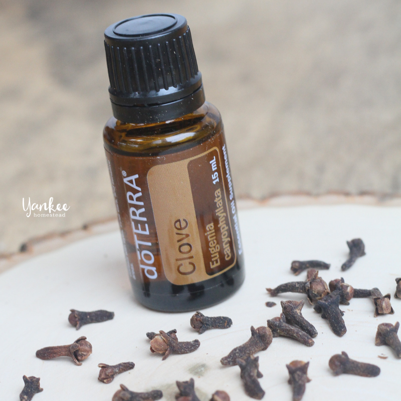 12 Ways to Use Clove Oil